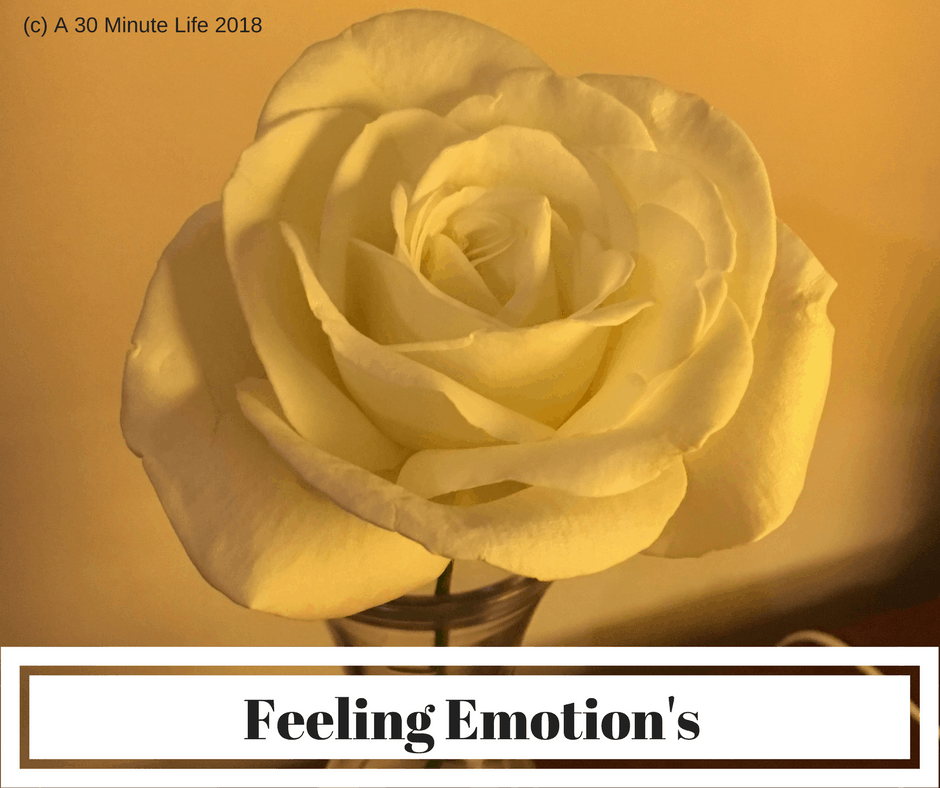 Feeling Emotion's