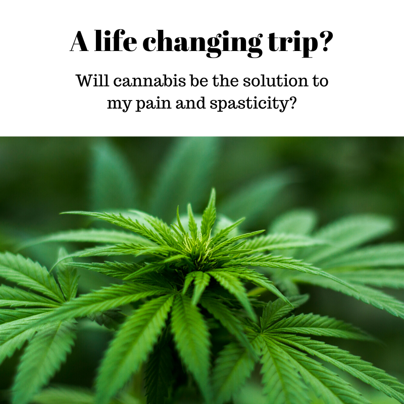 A life changing trip? Cannabis
